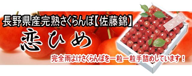 長野県産さくらんぼ恋姫